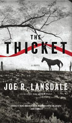 The Thicket by Joe R. Lansdale (Mulholland Books--$26)