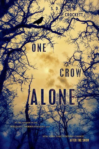 One Crow Alone
