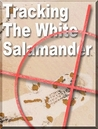 Tracking the White Salamander by Jerald Tanner