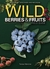 Wild Berries & Fruits Field Guide: Minnesota, Wisconsin and Michigan