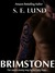 Brimstone (Book 1 of the St...