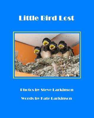 Little Bird Lost by Kate Larkinson