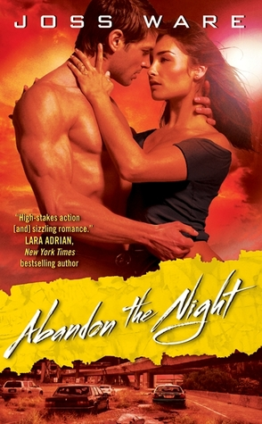Abandon the Night (Envy Chronicles, #3)