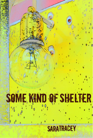 Some Kind of Shelter by Sara Tracey
