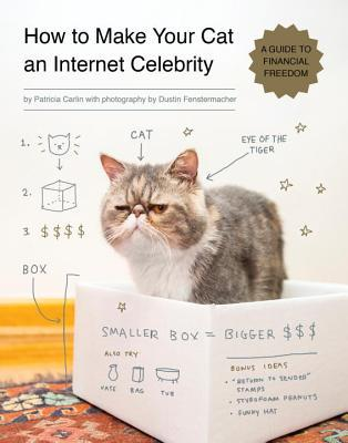 How to Make Your Cat an Internet Celebrity by Patricia Carlin