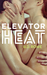 Elevator Heat by B.D. Rowe