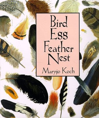 Bird Egg Feather Nest by Maryjo Koch