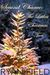 The Littlest Christmas Tree (Second Chance, #2)