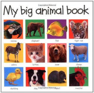 My Big Animal Book by Roger Priddy