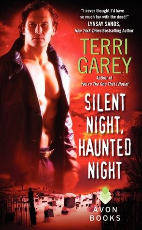 Silent Night, Haunted Night by Terri Garey