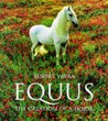 Equus: The Creation of a Horse (Evergreens)