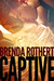 Captive (Fire on Ice, #2)