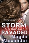 Storm Ravaged (Storm Damages, #2)
