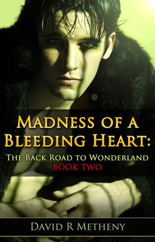 Madness of a Bleeding Heart by David R. Metheny