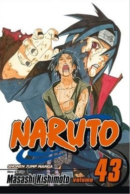 Naruto, Vol. 43:  The Man with the Truth (Naruto, #43)