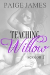 Teaching Willow: Session One