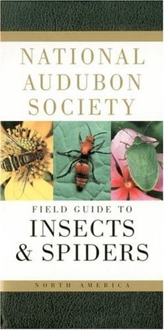 National Audubon Society Field Guide to North American Insect... by National Audubon Society