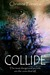 Collide by Christine Fonseca
