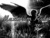 Maximum Ride RP [Advanced RP]