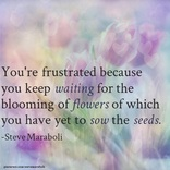 You're frustrated because you keep waiting for the blooming of flowers of which you have