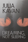 Dreaming, Not Sleeping - Excerpt