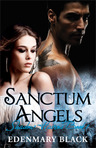 Sanctum Angels: Shadow Havens Book 1 - Excerpt 2  from Chapter One