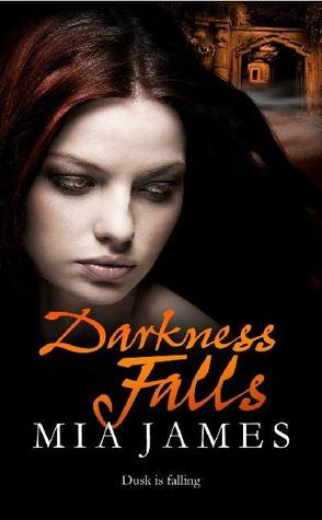 Darkness Falls (Ravenwood Mysteries, #2)