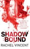 Shadow Bound (Unbound, #2)
