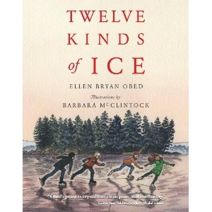 Twelve Kinds of Ice