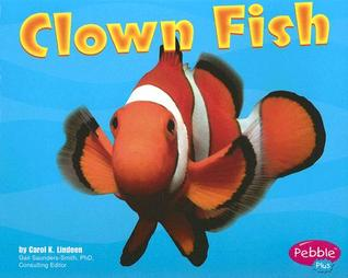 Clown Fish (Under the Sea (Capstone Paperback))