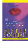 The Coldest Winter Ever by Sister Souljah