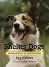 Shelter Dogs by Peg Kehret