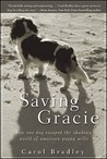 Saving Gracie by Carol Bradley
