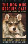 The Dog Who Rescues Cats by Philip Gonzalez
