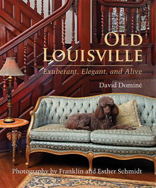 Old Louisville by David Domine