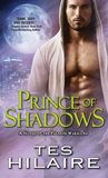 Prince of Shadows (Paladin Warriors, #3)