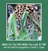 What Do You See When You Look At Me? by Sarah E. Sauer