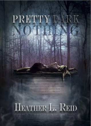 Pretty Dark Nothing (Pretty Dark Nothing, #1)