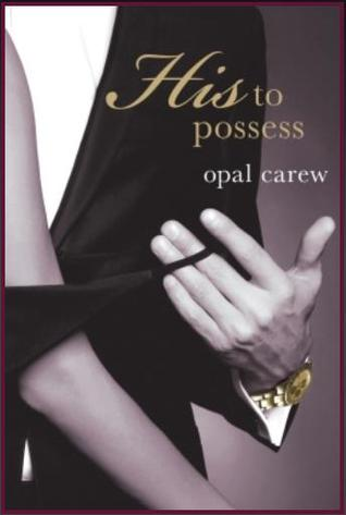 Perfect Storm (His to Possess, #3)