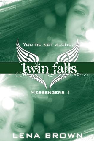 Twin Falls: A Novel