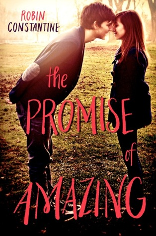 Review: The Promise of Amazing by Robin Constantine (Blog Tour)
