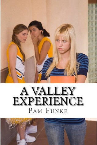 A Valley Experience by Pam Funke