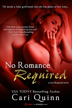 No Romance Required by Cari Quinn