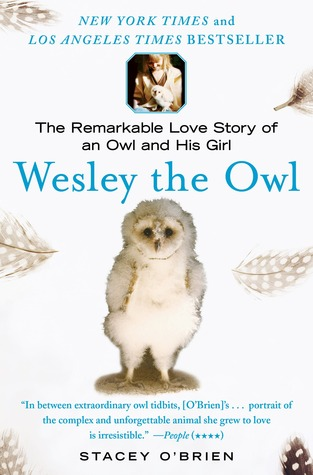 Short and Sweet Review – Wesley the Owl: The Remarkable Love Story of an Owl and His Girl by Stacey O'Brien