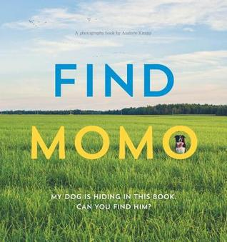 Find Momo: Hide and Seek with an Adventurous Border Collie