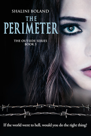 The Perimeter (Outside #3)