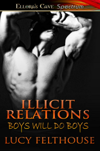Illicit Relations (Boys Will Do Boys #5)