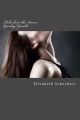 Tales from the Arena by Elizabeth Schechter