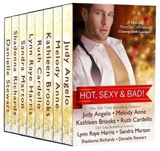 Hot, Sexy & Bad: A Holiday Novella Collection