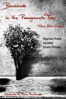 Blackbirds in the Pomegranate Tree by Mary Ellen Sanger